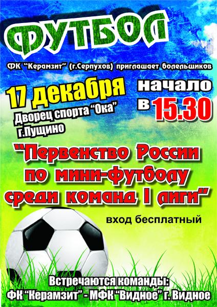 Первенство России по мини-футболу 1 лиги (Московская область)