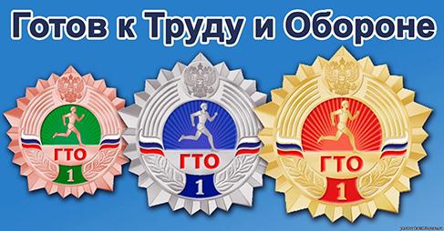 Тестирование физической подготовленности учащихся, относящихся к III-V ступеням Всероссийского физкультурно-спортивного комплекса ГТО.