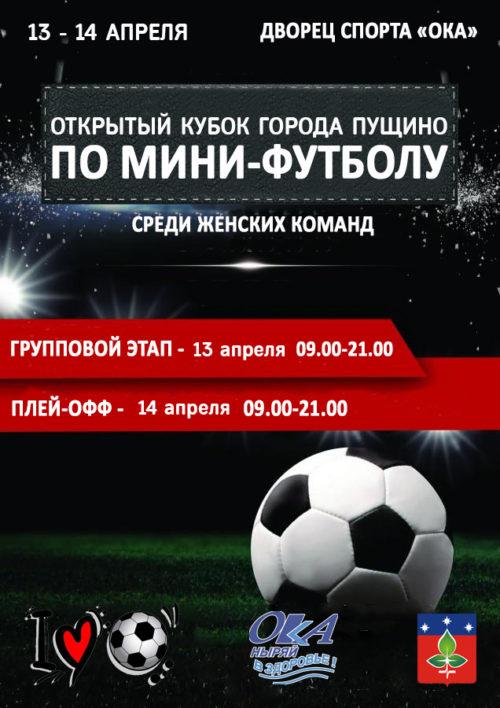 Открытый Кубок города Пущино среди женских команд.