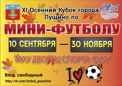 11-осенний Кубок города Пущино по мини-футболу 2019 года. Тур 8-10 (22-25.10.2019)